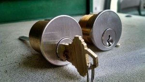 Rim cylinder and Mortise Cylinder